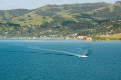 cruise ship tender leaving akaroa harbour nz - stock photo