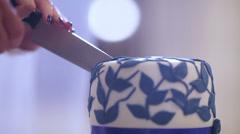 Cuting beautiful cake - stock footage