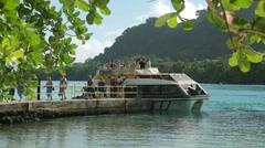 Cruise ship tourists arrive on tender, champagne bay, vanuatu Stock Footage