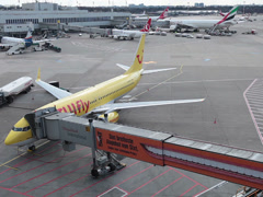 Tuifly airlines boeing 737-8k5 jet airplane d-ahfv dusseldorf airport.apron Stock Footage