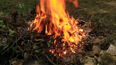 Open fire close up Stock Footage