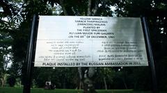 Tree Yuri Gagarin 2 Stock Footage