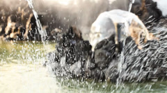 Water splashes in fountain - close up - stock footage