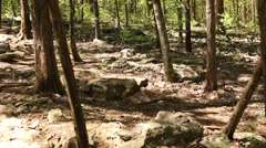 Mountain bike riding downhill thru rocks in the woods Stock Footage