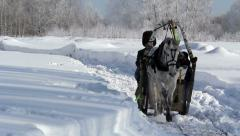 Horseback Russian sleigh in winter, Russia, Novosibirsk Stock Footage