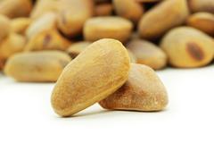 Stock Photo of cedar nuts