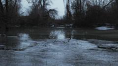 Frozen lake steadicam panorama Stock Footage