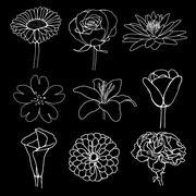flower illustration sketch design - stock illustration