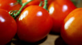 Ripe red tomatoes. Slider shot Footage