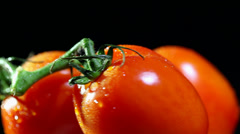 Three tomatoes on  black background in rotation. Close up Stock Footage