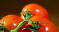 three tomatoes  with water drops in rotation. Close up Footage
