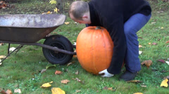 Farmer man put huge orange ripe pumpkin in barrow and carry Stock Footage