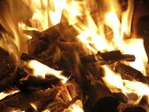 Stock Photo of log fire