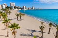 Stock Photo of alicante san juan beach of la albufereta with palms trees