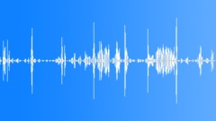 Dog Whimper Sound Effect