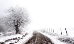 Frosty winter | rural scene Stock Photos