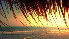 Tropical beach sunset background. Sea waves and sun in ocean coast Stock Footage