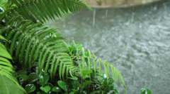 Raining and thunder Stock Footage