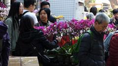 Hong Kong Garden or Fa Yuen street Chinese New Year flower shopping China Asia Stock Footage