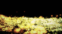 Particle lights Stock Footage