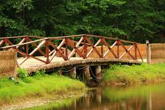 The wood wooden bridge Stock Photos