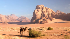 Wadi Rum Bedouin handler with camel, Jordan, Middle East Stock Footage
