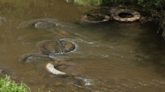 Water pollution - car tires in river Stock Footage