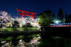 Sakura and torii at night Stock Photos