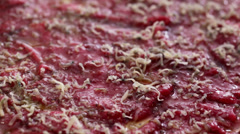 Beef carpaccio - cheese grating Stock Footage