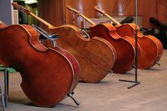 Vintage bass viols - stock photo