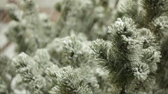 Snow falling down onto pine branches Stock Footage