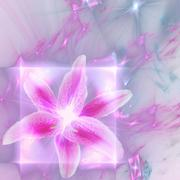 Abstract elegance background. Pink - purple palette. Stock Photos