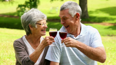 Affectionate senior couple drinking red wine in the park Stock Footage
