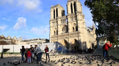 Feeding pigeons by Notre-Dame, Paris Stock Footage