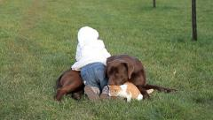 Little cat and brown labrador with a girl Stock Footage