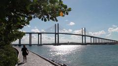 Newton Navarro bridge and cashew tree Stock Footage