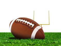 Football ball on grass with goal post Stock Photos