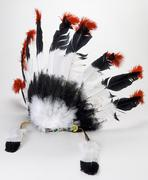 indian feather headdress - stock photo