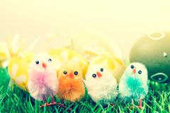 easter chick and eggs - stock photo