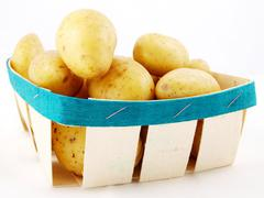 Potatoes in basket towards white - stock photo
