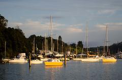 Opua marina at the  bay of islands new zealand Stock Photos