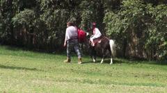 Pony Ride, Horses, Farm Animals Stock Footage
