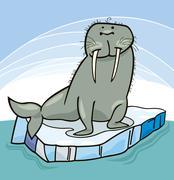 Walrus on floating ice - stock illustration