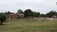 Stockholm archipelago farmhouse - stock footage