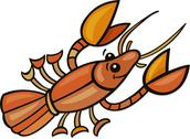 Stock Illustration of Crayfish