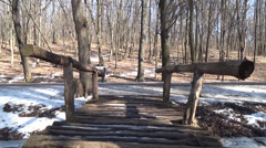 Old wooden bridge in a spring forest - stock footage