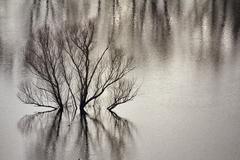 Flooding lake Stock Photos