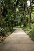 Stock Photo of garden stone path