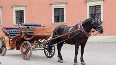 Warsaw, Poland. Horse cab in front of the royal palace. The Old Town Stock Footage