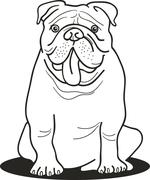 bulldog for coloring book - stock illustration